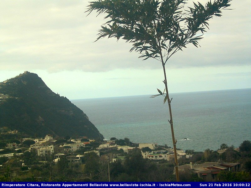 Webcam Appartamenti Bellavista